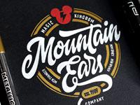 20 креативных примеров типографики и логотипов за январь 2017